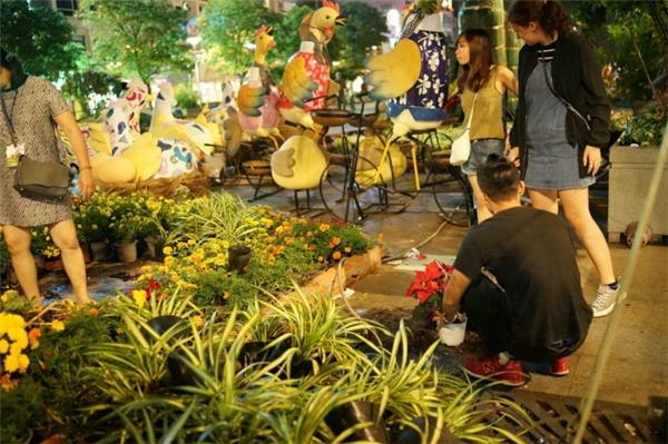 Người dân vượt rào nhặt hoa tại đường hoa Nguyễn Huệ