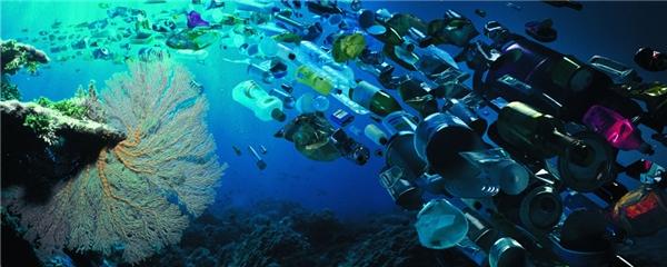 Rác thải biểnđã trở thành vấn nạn không chỉ riêng Quốc gia nào trên thế giới.