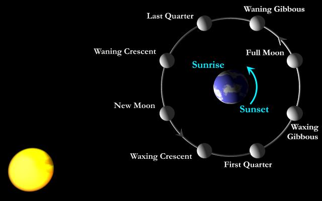 Chu kì Mặt Trăng quay quanh Trái Đất.