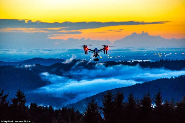 Bức ảnh máy bay không người lái bay lượn trên không trung tại Rừng Đen, Đức của tác giả Noman Nollau đạt giải ba.