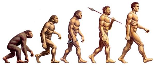 Đâu mới là tổ tiên xa nhất của con người?