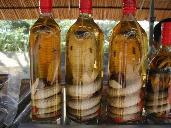 Nhờ chai rượu giả mà vị khách Nga may mắn thoát khỏi vòng tù tội. (Ảnh: Internet)