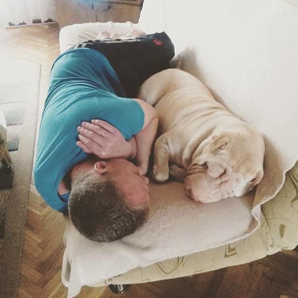 Hẳn là bố không thích chó một tẹo nào rồi. Ổng đâu có ôm nó đâu.