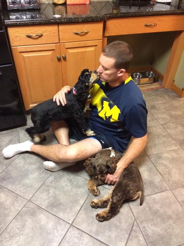 Ban đầu bố bảo đừng có dắt chó về nhà. Sau đó bố lại quát rằng đừng có dắt thêm con nào nữa. Nhưng có đứa nào chịu lắng nghe. Cái nhà này ai cũng khinh bố được hết.