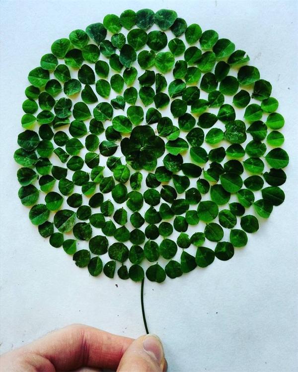 Quả bong bóng vui mắt được tạo ra từ những chiếc lá.