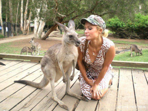 Có lẽ nàng Paris Hiltonsẽ không muốn nhìn lại tấm ảnh xấu hổ này thêm một lần nào nữa.