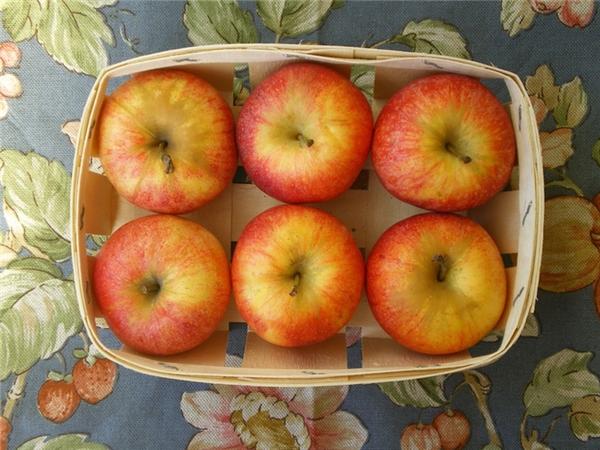 Hoặc 6 quả táo