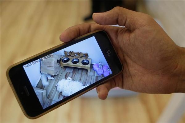 """""""Hội con sen"""" có thể trông chừng các boss của mình 24/7 thông qua hệ thống camera."""