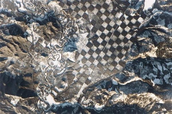 """Bức ảnh một khu rừng """"bàn cờ""""do NASA chụp được."""
