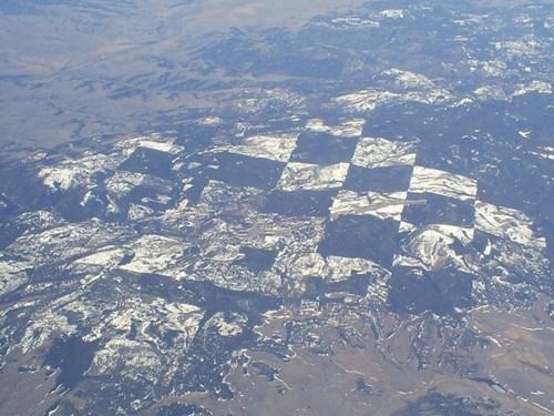 """Khu vực rừng """"bàn cờ"""" khác ở Idaho."""