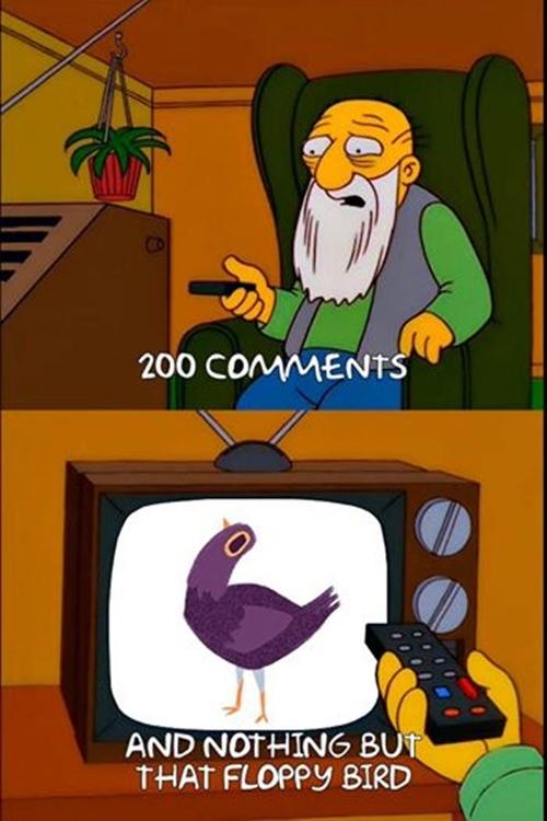 """""""200 bình luận dành cho con chim chẳng làm gì ngoài việc lắc đầu lên xuống liên tục..."""""""