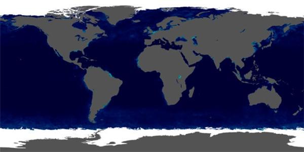 Simmon đã thêm các chi tiết như mức diệp lục đại dương, các tảng băng...vào tác phẩmBlue Marble của mình.