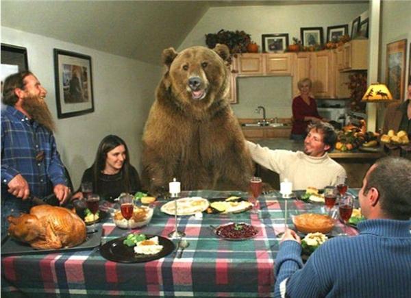 Có phải bạn đang nghĩ chú gấu khổng lồ này là một người đóng giả? Nhưng đây lại là chú gấu thật 100%. Nó được nuôi dưỡng từ nhỏ trong gia đình này nên tình cảm giữa họ rất tốt đẹp và thân mật. (Ảnh: Internet)