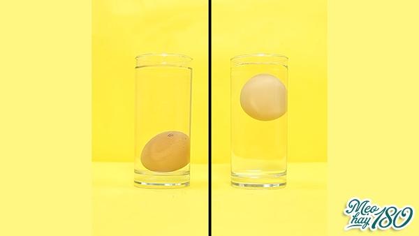 Hai quả trứng này khác nhau thế nào?