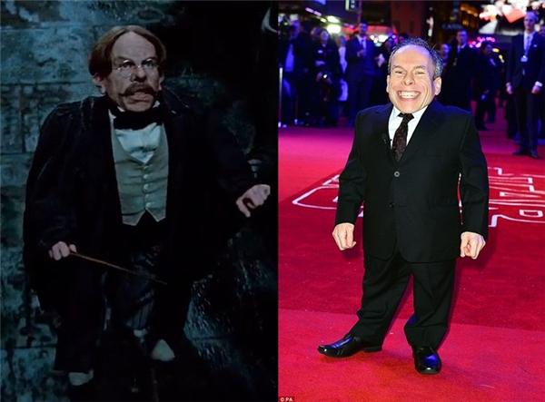 """Các """"fan"""" cứ ngỡ Warwick Davis -diễn viên thủ vai giáo sư Flitwick là một người khá già bởi lớp hóa trang, nhưng thật ra """"thầy"""" còn rất trẻ nhé."""