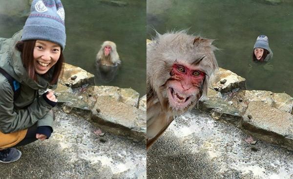 Hãy giúp chú khỉ trông vui vẻ như cô gái kia nhé!