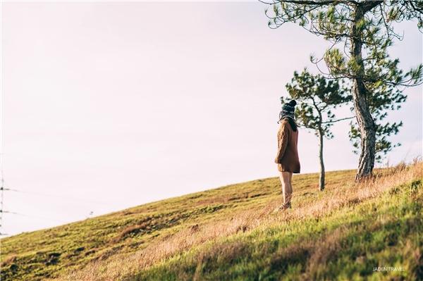 Đây mới chính là ngọn đồi đẹp nhất Đà Lạt bạn nhất định phải check-in