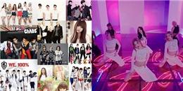 'Bắt bài' các trào lưu đình đám của sao K-Pop