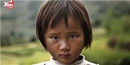Chấm dứt bạo lực đối với trẻ em ở Việt Nam