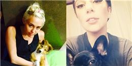 [Mlog Sao] Miley Cyrus, Lady Gaga đồng loạt 'tự sướng' cùng thú cưng