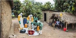 Hai vợ chồng tung tin có dịch Ebola ở Việt Nam như thế nào?