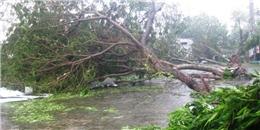 Đà Nẵng di tản gần 25 vạn dân khi có siêu bão