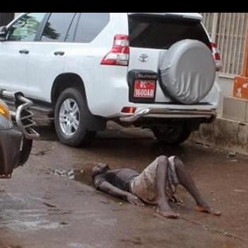 Kinh hoàng chó hoang ăn thịt xác nạn nhân Ebola