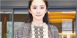 Dương Mịch hy vọng fan chấp nhận vẻ đẹp của vòng 1 khủng