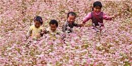Những điểm du lịch Việt Nam hấp dẫn mùa cuối thu