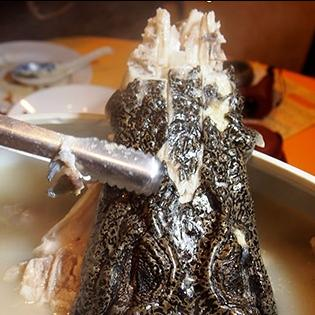 10 món ăn kinh dị nhất thế giới