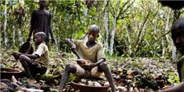 Sự thật xấu xí về lao động trẻ em đằng sau những thanh sô cô la