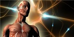 Giải đáp những câu hỏi 'Tại sao?' về cơ thể con người