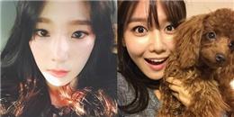 Taeyeon khoe mặt mộc đượm buồn, Sooyoung hớn hở tạo dáng cùng cún cưng