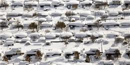 Toàn cảnh New York bị chôn vùi trong bão tuyết