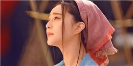 Fan bức xúc vì phim của Phạm Băng Băng bị ngưng chiếu