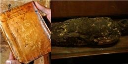 'Kinh dị' 6 hiện vật kì lạ nhất được trưng bày trong viện bảo tàng