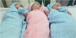 [Tết 2015] Những'chú dê con' chào đời ngay phút giao thừa