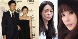 Những vụ bạo hành gia đình gây chấn động của sao Hoa ngữ