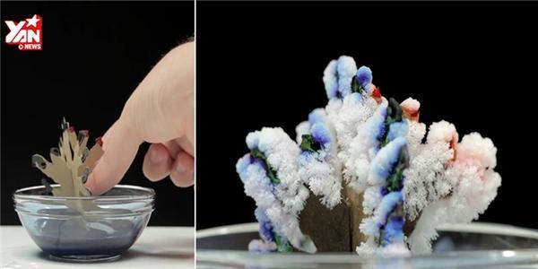 Bất ngờ với phép màu của muối
