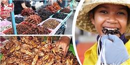 Ngỡ ngàng với khu chợ chỉ bán toàn côn trùng... ăn được