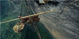 Cheo leo trên vách đá để lấy mật ong ở Nepal