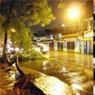 TP.HCM: Sẽ phải di tản 250.000 người nếu bão cấp 10 đổ bộ