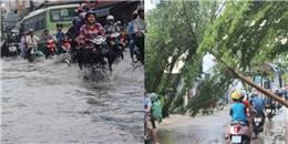 TP.HCM: Mưa dông lớn, đường chìm trong biển nước, cây xanh gãy ngã hàng loạt.