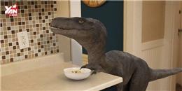 Đời không như là mơ khi 'chung sống' với khủng long