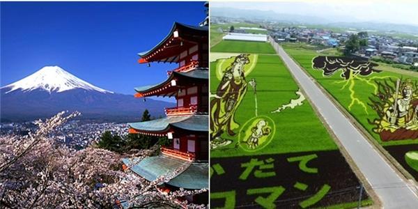 30 điều cực ngộ nghĩnh gần như chỉ có ở Nhật Bản