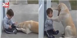 Tình cảm của cậu chủ thiểu năng và chú chó trung thành gây xúc động mạnh