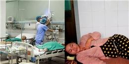 Quảng Nam: Xuất hiện dịch bệnh lạ gây nguy hiểm tính mạng