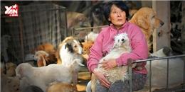 Cô giáo về hưu giải cứu 100 chú chó khỏi lễ hội ăn thịt chó