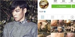 Mặc 'bão dư luận', T.O.P vẫn được YG bênh vực