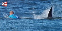 Cá mập tấn công vận động viên ngay trên sóng truyền hình trực tiếp